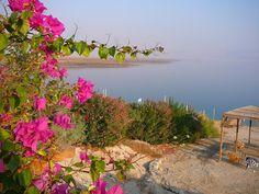 Dead sea @ Israel