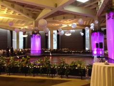 Reception lighting - Purple/Pink