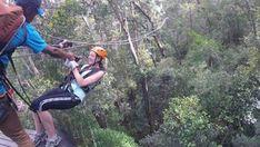 Tsitsikamma Canopy Tour - Linda Armstrong Unzipping Adventure Canopy, Photo Galleries, Tours, Adventure, Running, Keep Running, Why I Run, Canopies, Fairytail