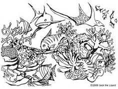 119 Best Marine life coloring pages images in 2019 ...