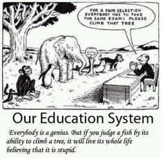 We need to think outside the box. Standardisation is not the answer.