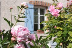 Le jardin des pralines - Amy's Balcony