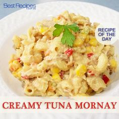 Recipe of the day - Creamy tuna mornay recipe: www. Fish Dishes, Seafood Dishes, Seafood Recipes, Pasta Recipes, Cooking Recipes, Tuna Dishes, Grandma's Recipes, Recipies, Gnocchi Recipes