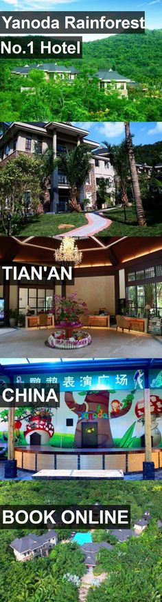 Yanoda Rainforest No.1 Hotel in Tian'an, China. For more information, photos, reviews and best prices please follow the link. #China #Tian'an #travel #vacation #hotel