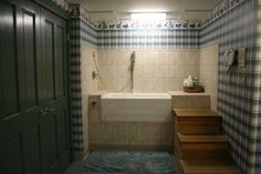 dog wash station / bath