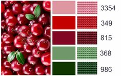 Color combo #9  Christmas colors