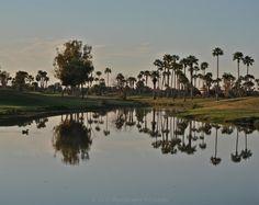 Reflections of Scottsdale