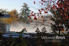 Herfst bij de Veluwse Bron; warme sauna's en baden, ultiem relaxen en heerlijk eten.