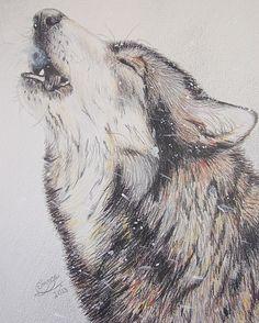 Wolf Awareness Week student poster winner! http://www.discoverycenter.net/wolf-awareness-week.html