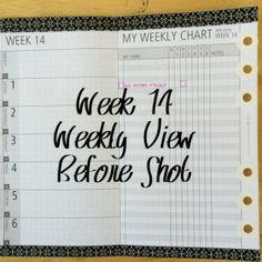 Week 14 Weekly View Before Shot #filofax #diyfish #lifemapping