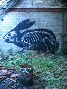 Best of Street Art 2013 – Les 25 coups de coeur de l'année !  Roa