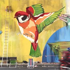 Arlin in Sao Paulo