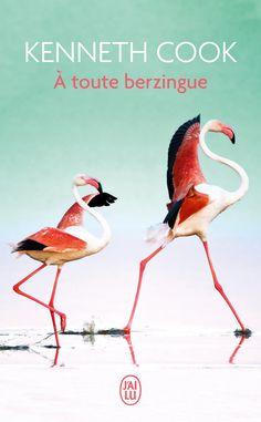 Kenneth COOK // À toute berzingue //
