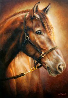 Fabiano Millani: Cavalo