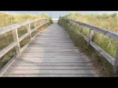Das ganze Jahr Ostsee! Herzlich Willkommen am Weissenhäuser Strand! #urlaub #ostsee #strand Weissenhäuser Strand, Deck, Live, Outdoor Decor, Amusement Parks, Time Out, Welcome, Vacation, Summer