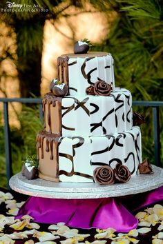 Love this cake - half and half! Also -- cute tuxed