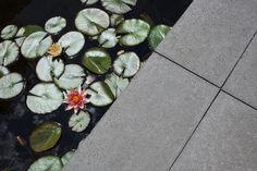 exclusieve beton tegels van Schellevis. Bekijk de selectie van NederveenTuinen in de showroom in Lijnden. Hovenier tuinaanleg