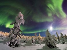 The World at Night: Earth and Sky Photo Contest - Telegraph