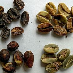 Does green coffee bean extract have vitamin k picture 8