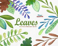 Leaves Watercolor Clip Art Set Hand drawn Leaves Diy clip
