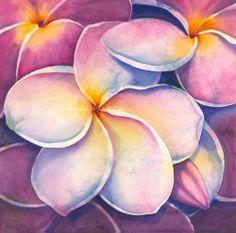 Manoa Pink Plumeria