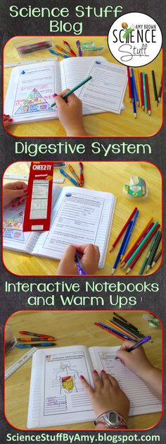 Science Stuff Blog.  Using interactive notebook pages to teach the human digestive system