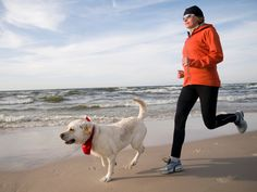 No matter how energetic dogs seem at the house, if your dog isn't in running shape, you might end up walking him back home. Try these four tips to get Fido ready to hit the ground running.