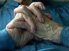 hands, in my profession I have seen many hands just like this clutched in prayer or thought  Love this photo