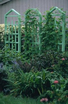 A Trellis Trio:  These trellises do the work of a fence, a screen, and a vine pole. They can provide privacy, serve as an arbor, or simply spruce up a corner of your yard.
