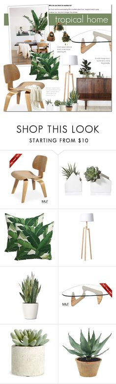 """Tropical Home - MLF 11"" by dian-lado ❤ liked on Polyvore featuring interior, interiors, interior design, home, home decor, interior decorating, PLANT, Allstate Floral, NDI and Dot & Bo"