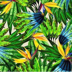 Estamos felizes e orgulhosos em anunciar que vamos assinar os uniformes da delegação brasileira para a abertura e encerramento oficial dos Jogos Olímpicos. A @cea_brasil é responsável pela produção dos uniformes. Na foto uma prévia da nossa estampa inspirada no Brasil. #lennyniemeyer #jogosolimpicos #olimpiadas2016 #brasil