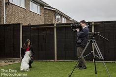 ITV Anglia TV news filming Milly and The Dog Photographer, Josh Coulson. Milly was the winner of The Dog Photographer Face of 2015 competition. #dogtogUK
