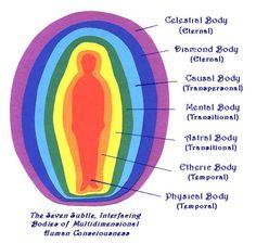 Body States ✩ #Consciousness