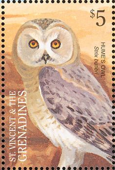 Hume's Owl stamp Saint Vincent & The Grenadines