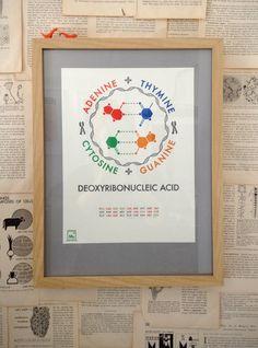DNA letterpress poster -- science, education, biology
