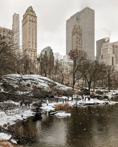 Central Park- New York Central Park Manhattan, New York Christmas, I Love Ny, City That Never Sleeps, Wanderlust Travel, Beautiful Landscapes, New York City, New York Skyline, Places To Visit