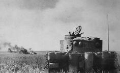 Tiger tank schwere Panzer Abteilung 505 N°121 in action Kursk