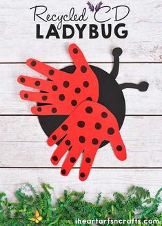 Recycled CD Ladybug Craft For Kids - I Heart Arts n Crafts Recycled CD Ladybug Craft For Kids! Cute craft idea for spring or summer speech therapy!<br> Today I'm teaming up with some very talented ladies for our first craft challenge of the year. This month's craft challenge was to create an insect from recycled materials. And because I never throw away anything, I happened to have some old scratched DVD's in my craft room just waiting to be used for the […] Kids Crafts, Paper Plate Crafts For Kids, Mothers Day Crafts For Kids, Thanksgiving Crafts For Kids, Spring Crafts For Kids, Daycare Crafts, Cute Crafts, Preschool Crafts, Art For Kids