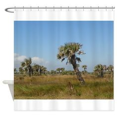 Washington Oaks Florida Scrub Shower Curtain