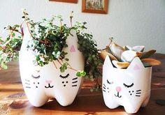Fiesta gatos Maroangel