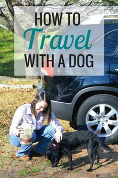 How to Travel with a Dog | Animals - Very Erin Blog