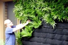 Florafelt Vertical Garden Guide. waters with drip system