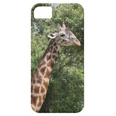 >>>Order          	giraffe iPhone 5 case           	giraffe iPhone 5 case In our offer link above you will seeThis Deals          	giraffe iPhone 5 case lowest price Fast Shipping and save your money Now!!...Cleck Hot Deals >>> http://www.zazzle.com/giraffe_iphone_5_case-179924327565196022?rf=238627982471231924&zbar=1&tc=terrest