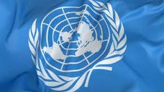 Is the United Nations a failure or success? Why?