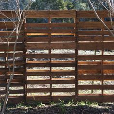 pallet fence: Might have to do this to hide my neighbors junk yard!