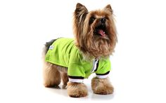 Linda camiseta polo - cor verde - para seu pet torcer pelo Brasil! Visite nossa loja virtual http://luxusdog.bpg.com.br