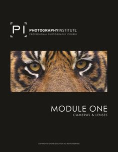 Course Outline - 12 Modules and 12 corresponding interactive assignments to complete. Photography Institute, Photography Courses, Photography Workshops, Royal Photography, Photography Tips, Online Photography Course, Professional Photography, Inner Peace, Camera Lens
