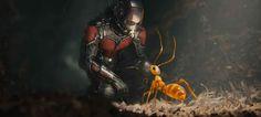 Se viene Ant-Man, enterate en www.otrasartes.com