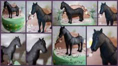 A Horse is a horse offcourse .... made by Jacqueline van der Wal & Petra Arnold - Cake by Jacqueline - CakesDecor