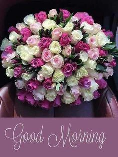 Good Morning Have a Day Filled With Joy And Happiness Good Morning Saturday, Good Morning Roses, Good Morning Gif, Good Morning Picture, Happy Saturday, Good Morning Beautiful Pictures, Good Morning Images Flowers, Morning Pictures, Beautiful Morning